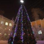 Елка возле УЛК зажглась :) С 1 декабря вас! Фото в альбоме нашей группы ВКонтакте: https://t.co/kmBO3yWarC https://t.co/FCsT81VBya