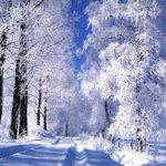 #СПервымДнёмЗимыТвиттерский ❄ С первым днем зимы. Удачи всем на завтрашнем сочинении :) https://t.co/UWfbRecwYT
