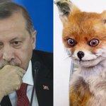 Эрдоган устроил Путину засаду у входа в туалет в Париже https://t.co/0PVKYwvQvB https://t.co/aemFUU4C0b