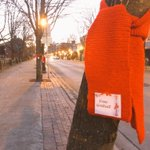 The red scarves are up! #RedScarfCampaign #WorldAIDSDay #Fredericton https://t.co/cES0koADt1