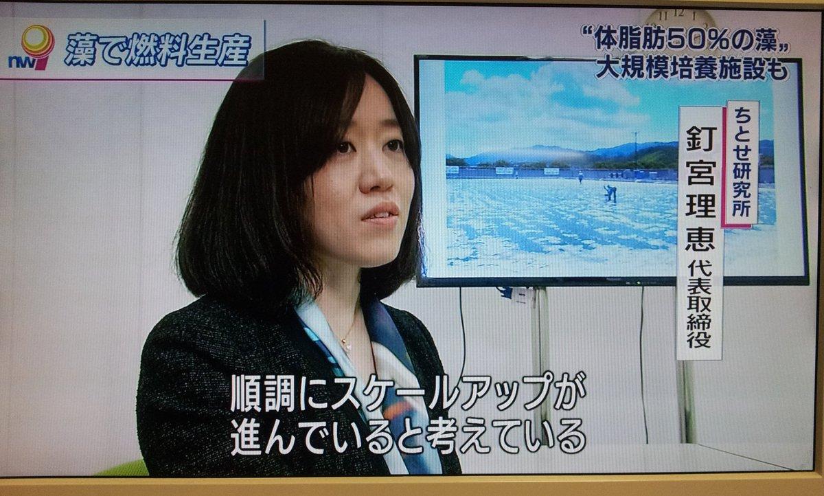 NHKのニュースに釘宮理恵 https://t.co/2CVl7RWpVj