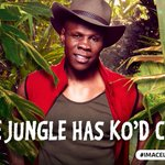 The Jungle has KOd @ChrisEubank and hes the 4th to leave Camp #ImACeleb https://t.co/ue3tRbUNab