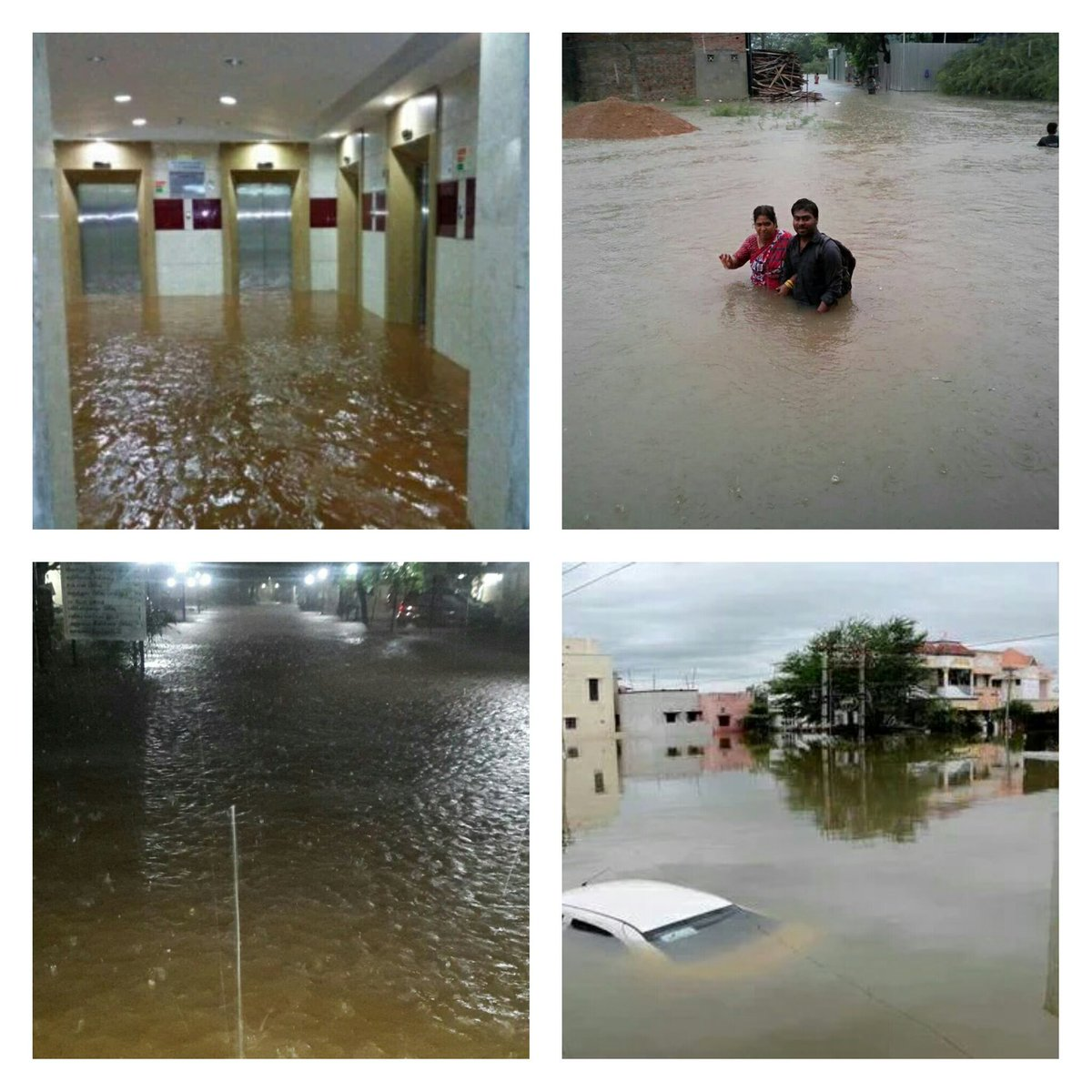 When people show compassion to animals at these times, faith in humanity restored. #Chennairains https://t.co/QU7h5qvcUz