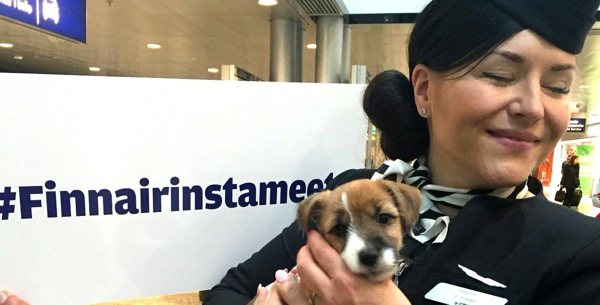 Miten meni Finnairinstameet? @HelenaKaartinen kirjoitti blogiin Kuvassa @suvisuhmura & Nani