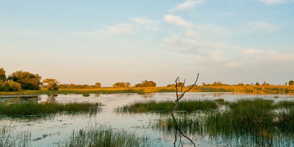 Why Botswana should be on your travel list for 2016, according to @gazettebw »