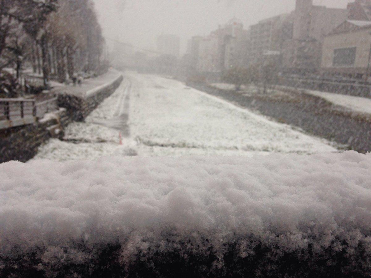 今朝の盛岡。雪がもつもつと降ってました。 #冬 #雪 https://t.co/7jVf2edimM
