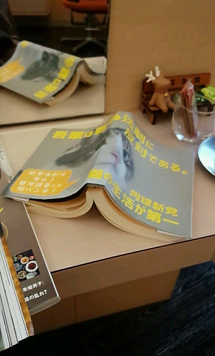 ヘアサロンに肉球新党ブックカバーの文庫本を持ち込みしてさり気なくアピール。美容師さんが「この本面白いですね、吾輩は戦争に…って書いてあるw」と直ぐに気付いてくれました。猫ちゃん引力強し。 #肉球新党 https://t.co/kvcqD9X8Mg
