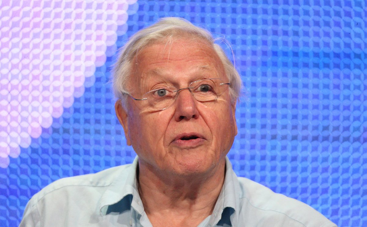 RT @Independent: Everyone should read what David Attenborough has to say about climate change https://t.co/AW2NRVsGGL https://t.co/zQQZlyEY…