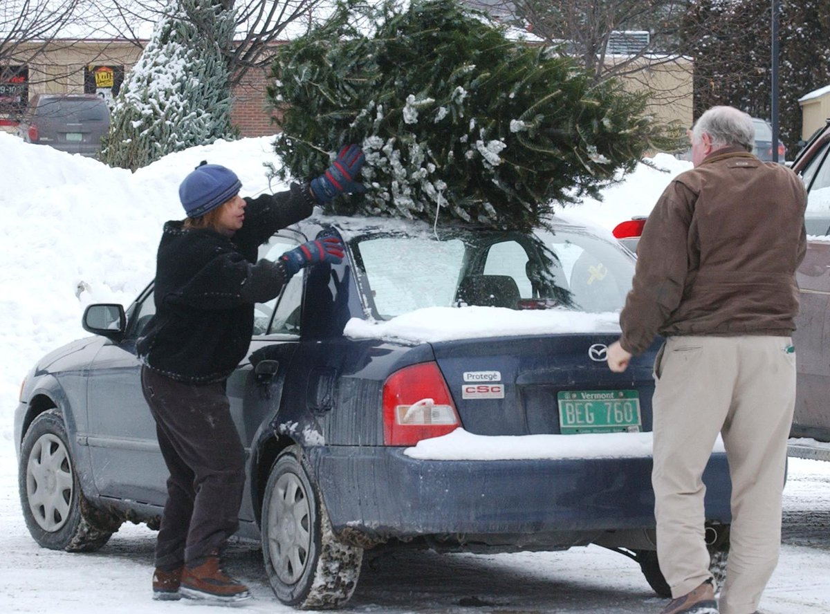 9 tips to get your #Christmas tree home safely without damaging your vehicle https://t.co/syzQ6YwoR8 #insurance https://t.co/lPBsVL47f5