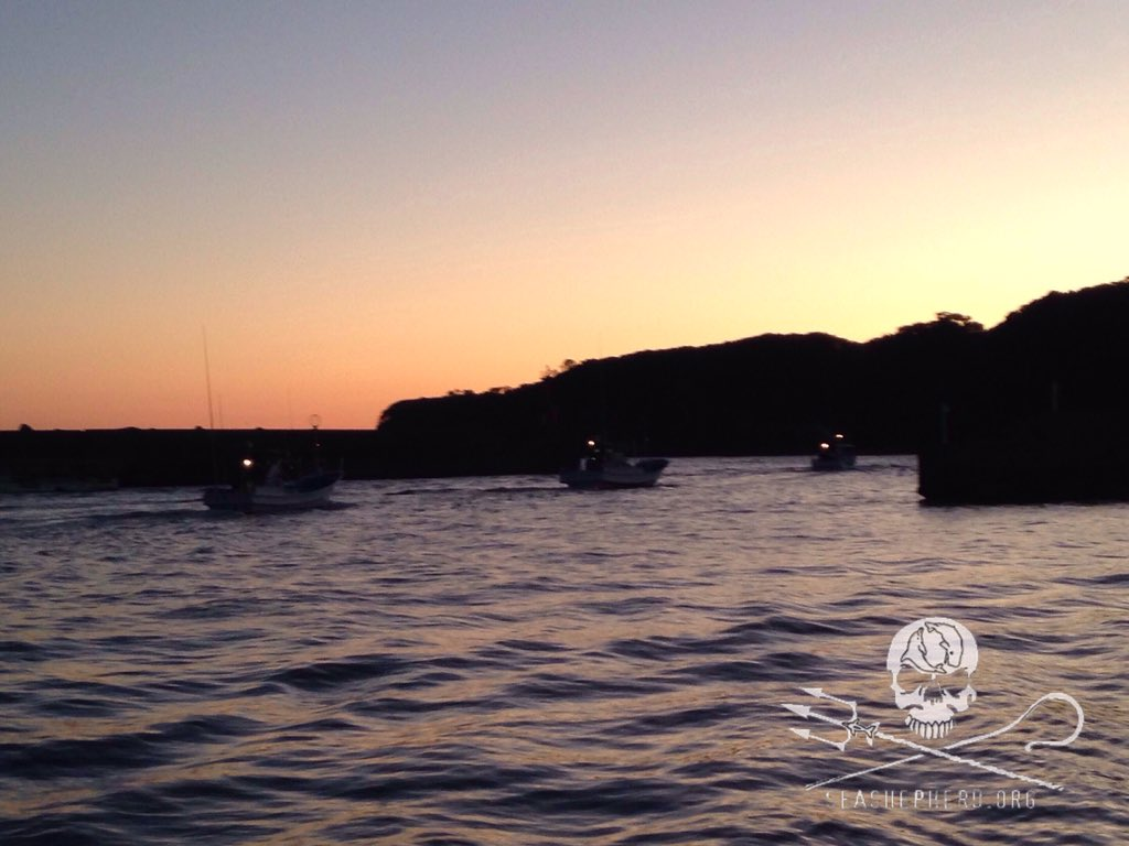 RT @CoveGuardians: 0630 am 11 killing boats leave the harbor this morning! Think Blue! #tweet4taiji https://t.co/en4ZBDRSWr