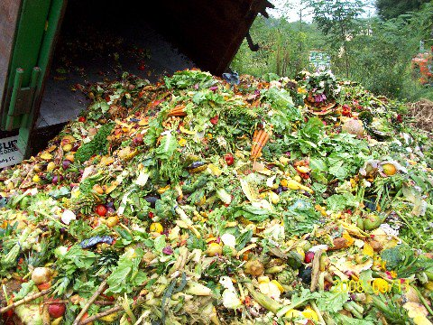 If #foodwaste were a country, it would be the 3rd largest contributor of GHG to our #climate. #ActNow4ZeroHunger https://t.co/89o5s1GHFe