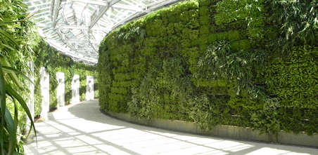 The more #plants, the bigger the benefits. #GreenWallWednesday Learn more @ https://t.co/o8TPAEOt0w https://t.co/ttjgKrqePh