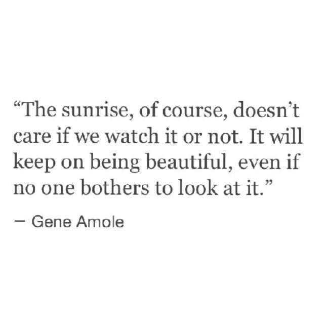 #The sunrise... #Quote #Love #Beauty #Life #Style #Motivation #Instagood https://t.co/KTMxx9gnuy