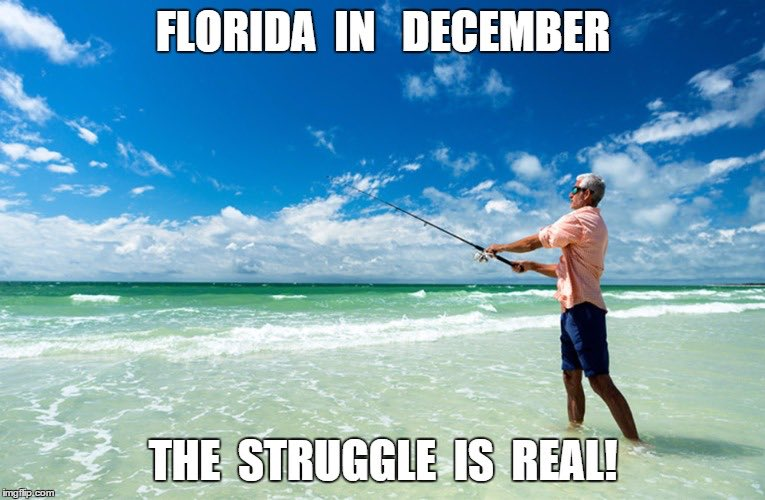 Florida in December... The struggle is real ☀️