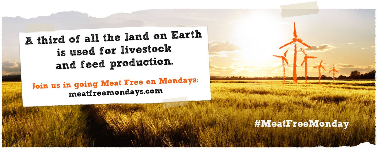 RT @MeatFreeMonday: A third of all land on Earth is used for livestock and feed production. Is this more or less than you would expect? htt…