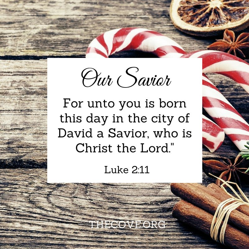 """For unto you is born this day in the city of David a Savior, who is Christ the Lord."" Luke 2:11 #Jesusisthereason https://t.co/mszPTtQtp5"