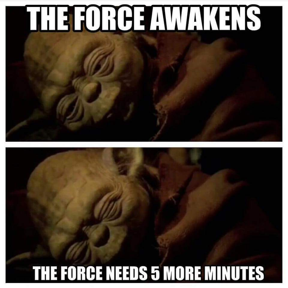 The old Jedi needs his sleep.  #TheForceAwakens https://t.co/lqXypDk9d9