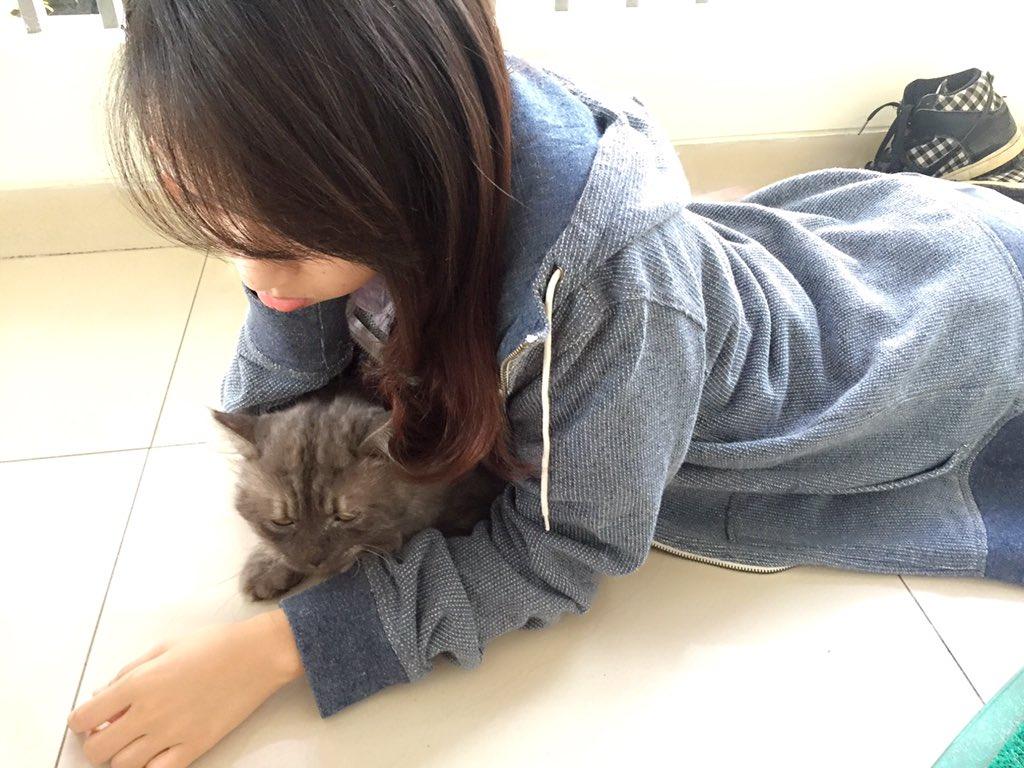 Bahaya Tidak? Kalau Anak Suka Bermain Sama Kucing - AnekaNews.net