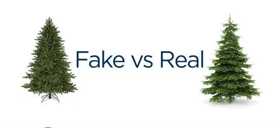 fake vs real christmas trees the perennial debate httpst