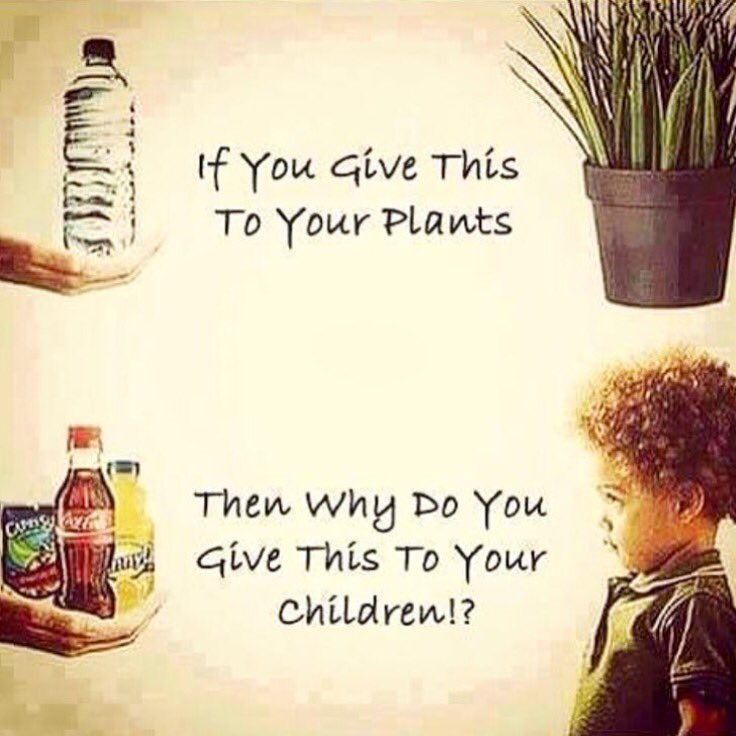 You feel your children based on values and knowledge. I will not be slowly killing my children with toxic foods. https://t.co/ZksM4fRtdX