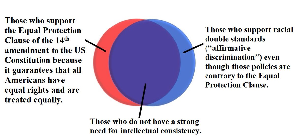 Venn Diagram Do You Support The Equal Protection Clause Or Racial