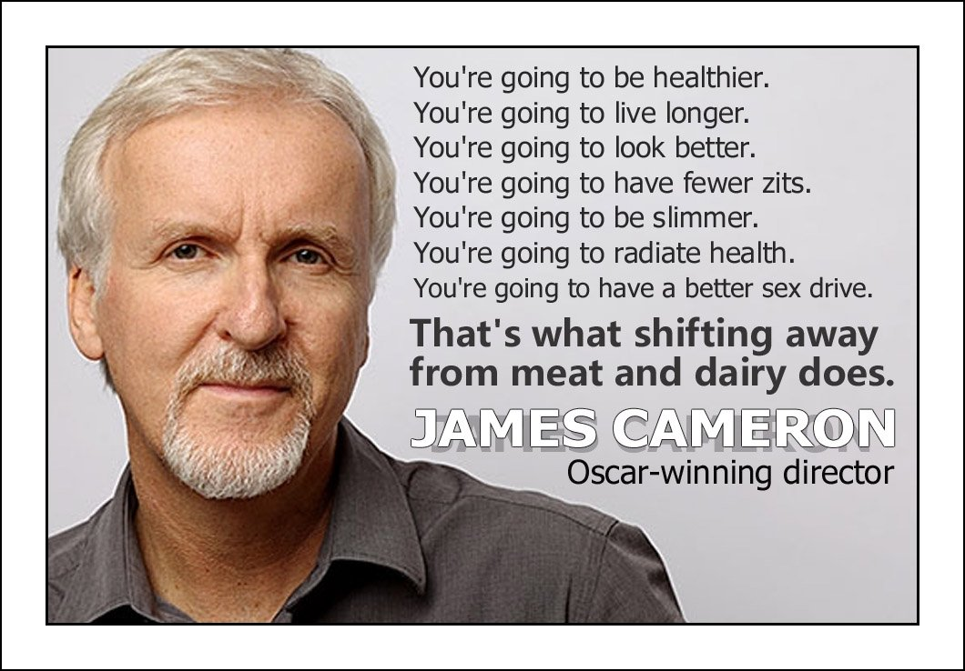 'You're going to be healthier & live longer' ~ Vegan director James Cameron promotes shift  away from meat and dairy https://t.co/XWUUPKoclC