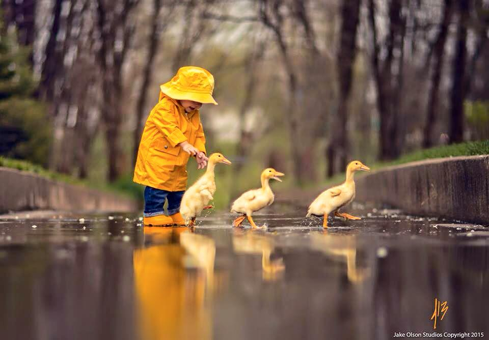 Follow The Leader... #Photo by Jack Olson #Dream #Love #Hope #Health #Peace & #Art https://t.co/rEpYNMZIcR