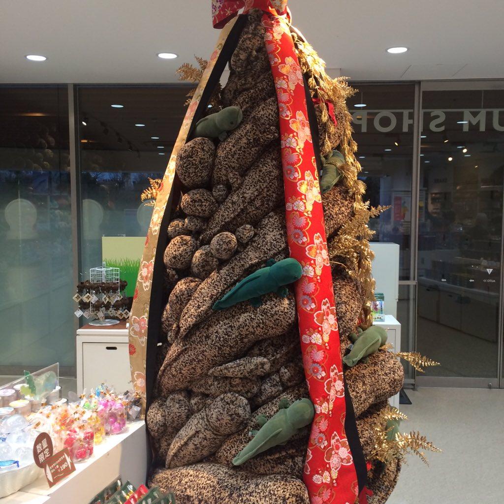 京都水族館の何を考えたらこの発想になったのかを問いたい クリスマスオオサンショウウオタワー(申し訳ない程度のツリー成分の緑) https://t.co/WJeMyjeMBe