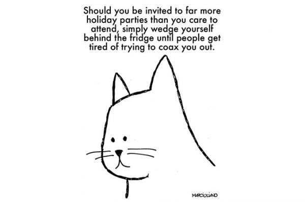 "Exactly. ""@neatorama: A Cat's Advice for the Holidays https://t.co/l2Yf3rP7K5 https://t.co/7uQpbleC9i"""