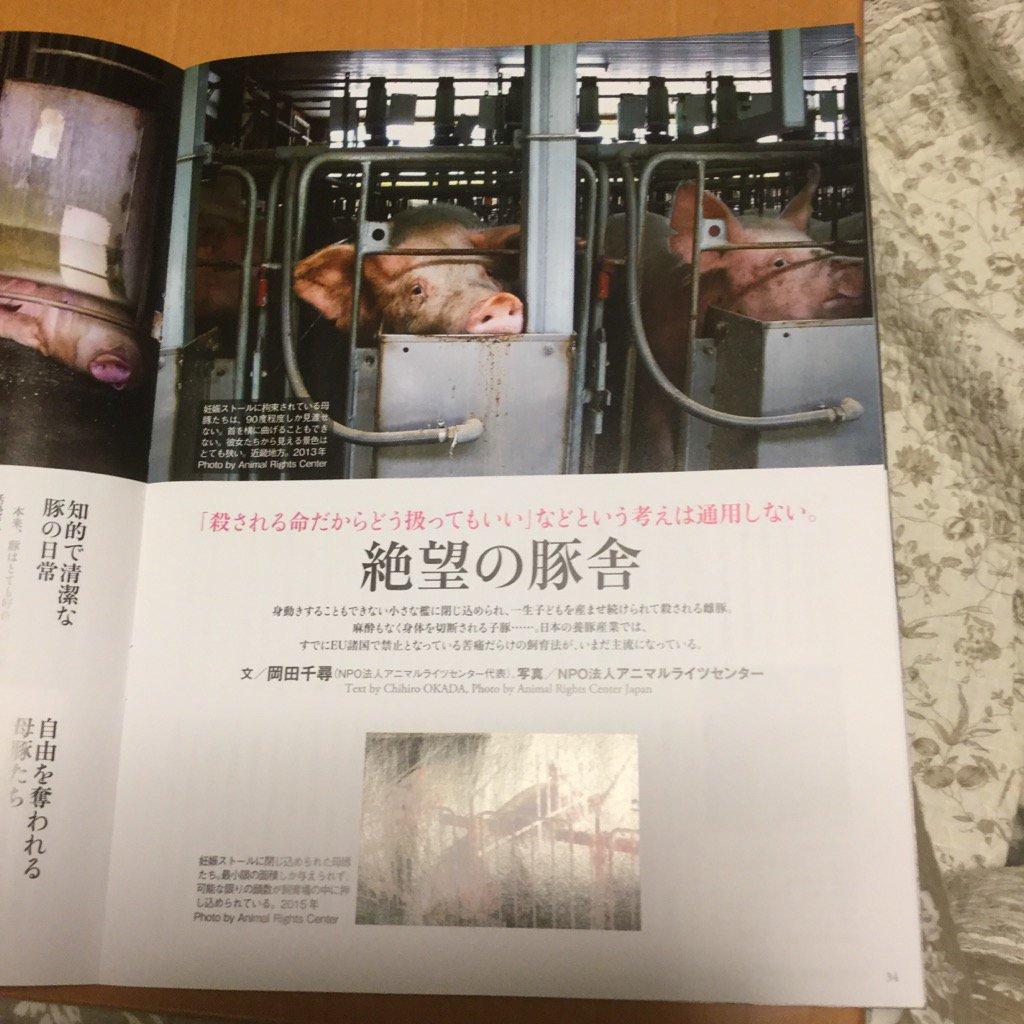 DAYS JAPAN 1月号の「絶望の豚舎」。こんなのダメだダメだ。絶対にイヤだ。助けて〜! https://t.co/tU8KwNmWZy