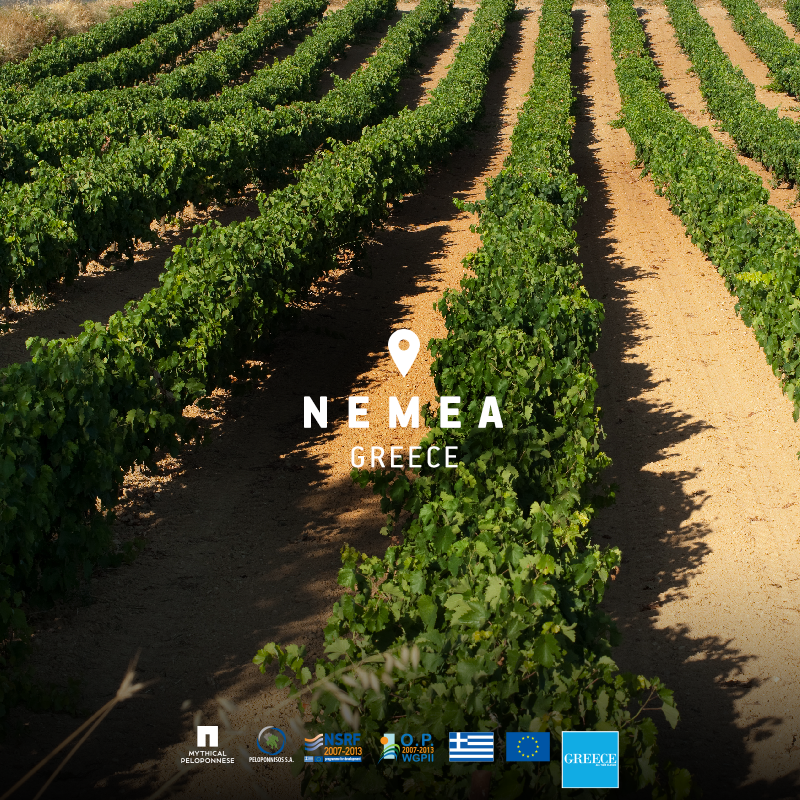 Harvest at Nemea, a perfect time for a wine tour to taste the unique variety of the region!