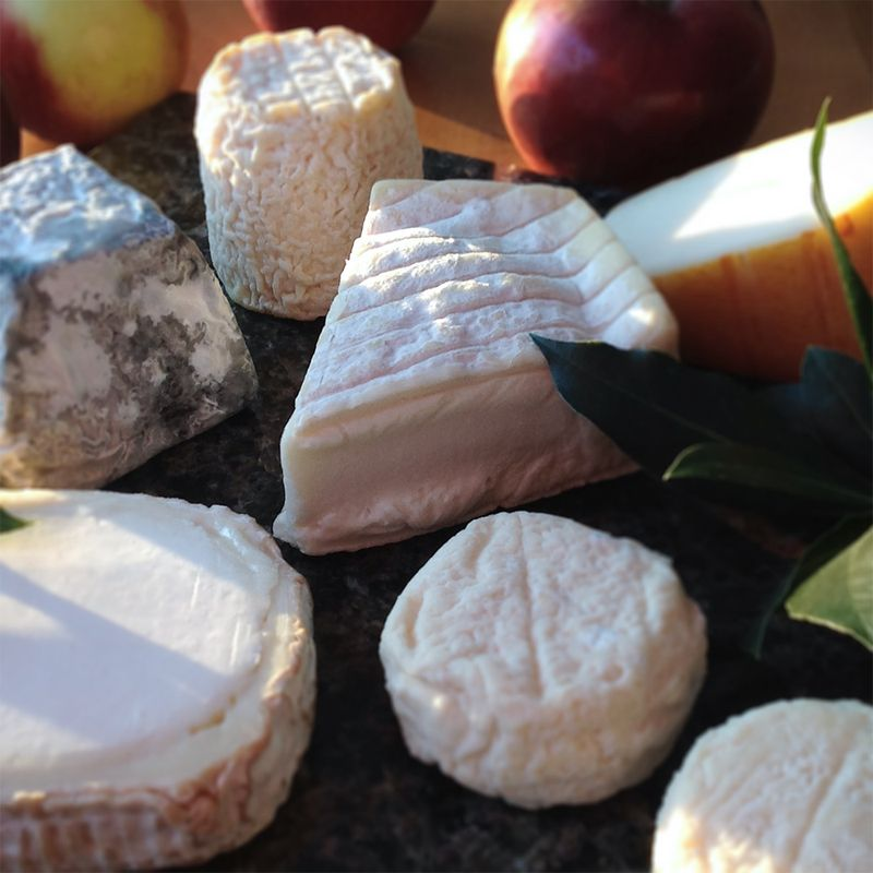 Six Delectable French Goat Cheeses, With French Wines to Pair https://t.co/ehaAOipsbi #wine #winelover #cheese https://t.co/SH62eVIUb0