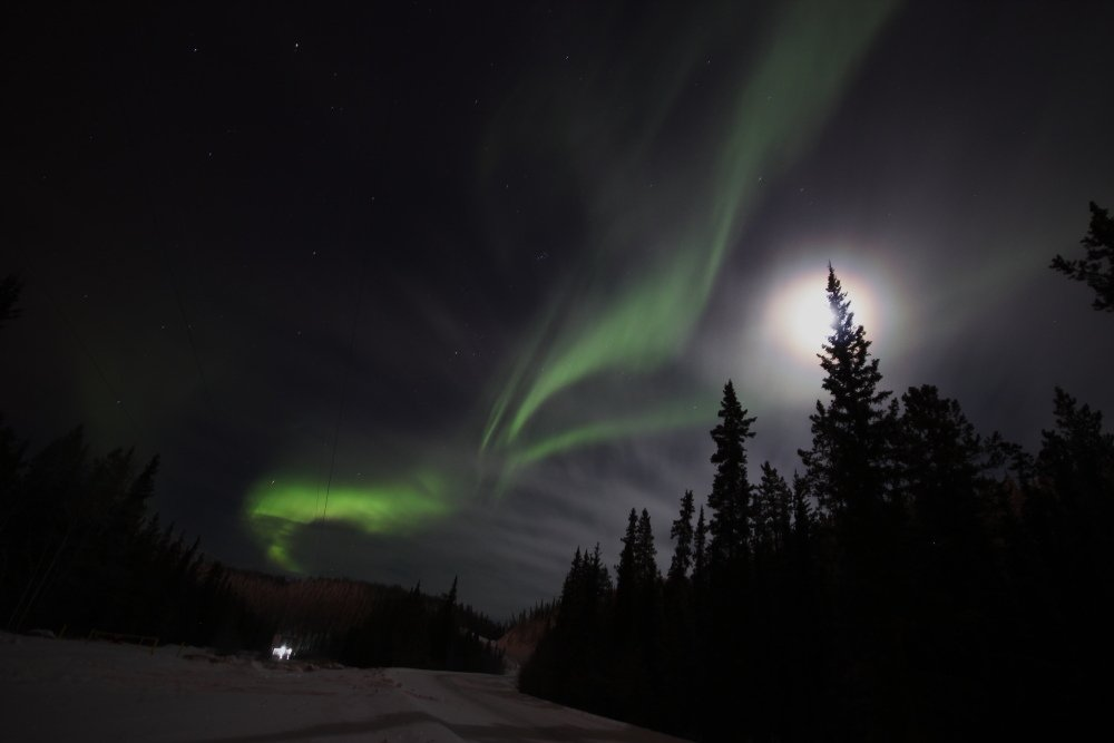 Starting to cloud over but still some #Aurora get through. Approx. 8pm PT in Whitehorse, Yukon. @TamithaSkov https://t.co/w9gPGY3KHq