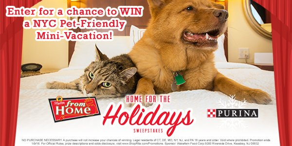 WIN a NYC Pet-Friendly Mini-Vacation from @Purina! Enter 12/20–12/26/15 for a chance here: https://t.co/re1FhPKwtu https://t.co/HF8W5o8Hog