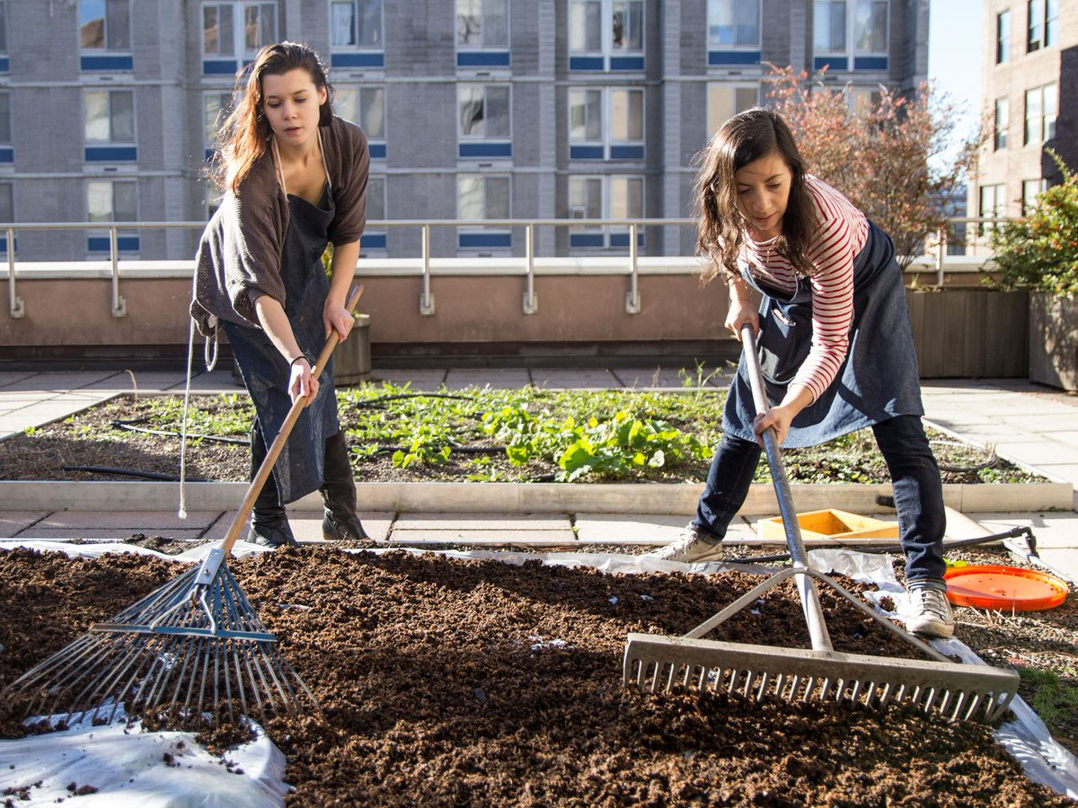 Fashion Institute of Technology is going full circle with compost made from fabric scraps https://t.co/wodoByh4Di https://t.co/JKb6ENwCE8
