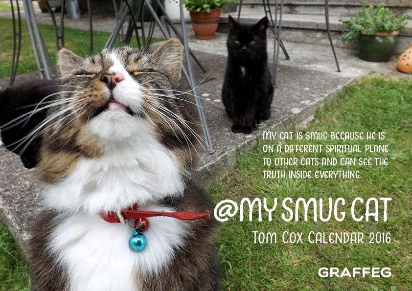 Not got a 2016 calendar yet? Never fear - simply RT this tweet for a chance to win a @MYSMUGCAT calendar! https://t.co/85kDbnsY6Z