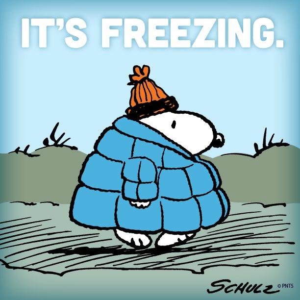 It's freezing. ️ - scoopnest.com