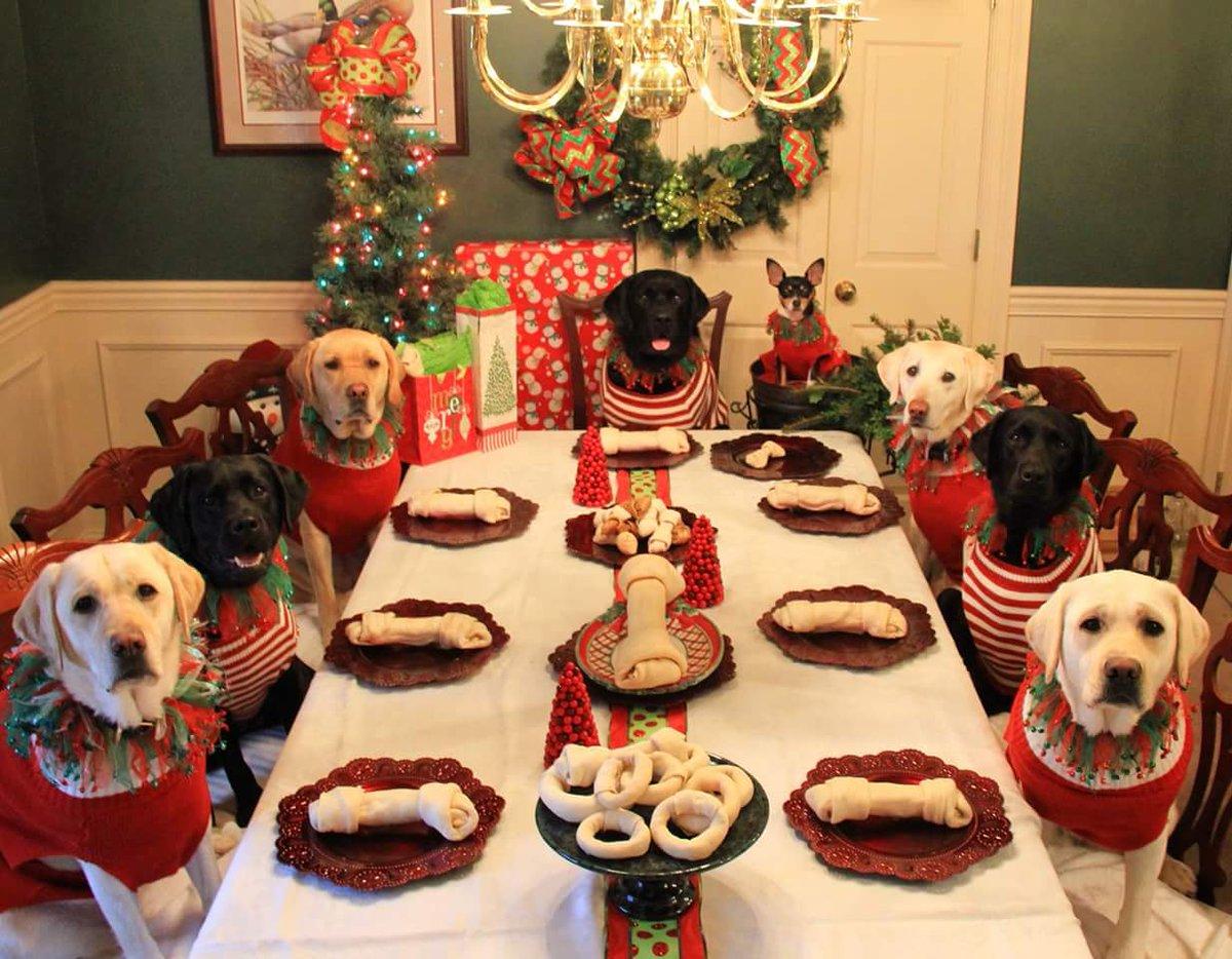 Merry Xmas :@valeriew272 @saranstm @Specmonkey @SocialVignerons @winewankers @pietrosd @Jandouglan @yennysuarezc https://t.co/g9EPQDjJ45