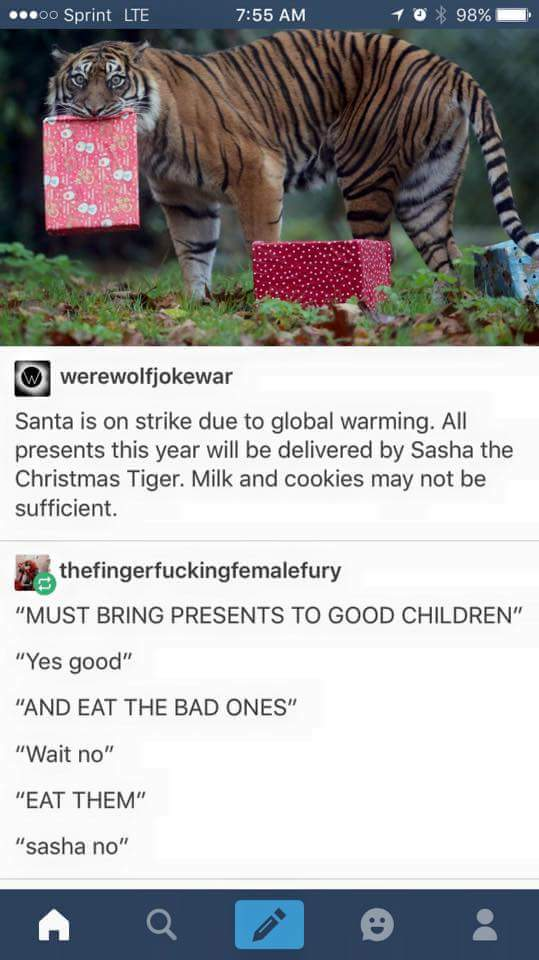 All hail Sasha the Christmas Tiger! *leaves out 10 lbs of raw steak* https://t.co/HlJ999cndB