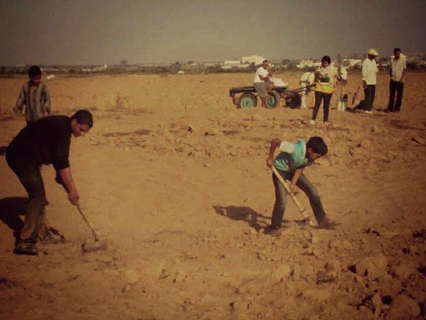 Israël empoisonne les terres agricoles à Gaza https://t.co/vOGAjP7weE https://t.co/HVvyvXLduU