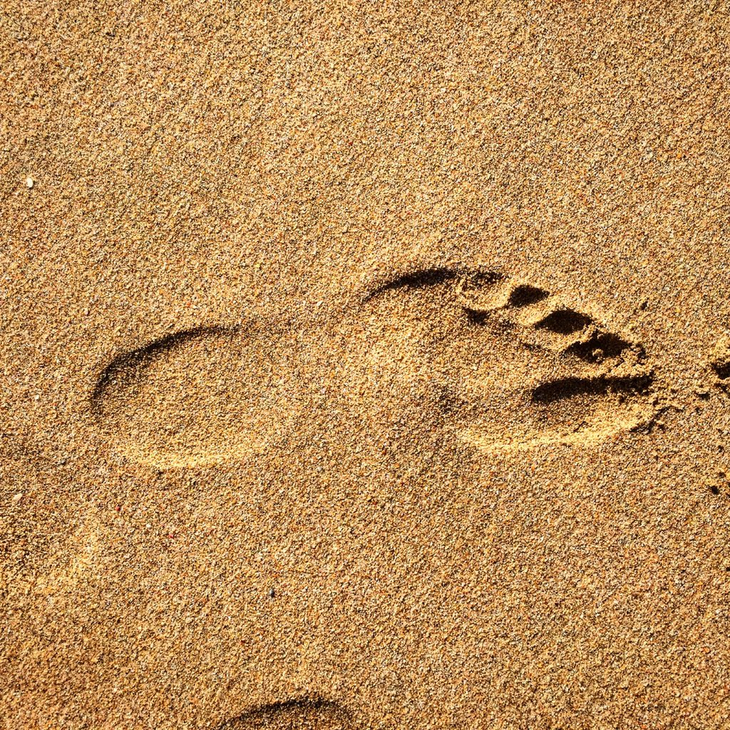 Our footprints never reveal our race, class, tribe or religion . They merely say we were here and left a mark https://t.co/v6u11gzQiZ