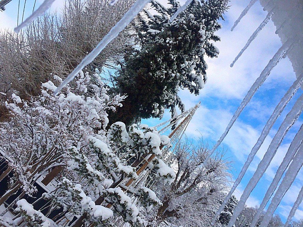 秋田県横手市。 雪景色と青空とツララの朝。  #yokote  https://t.co/JHehDomig8 https://t.co/kN2ORa6Rcg