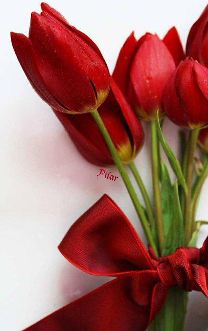 HAPPY  BIRTHDAY  TO U SALMAN KHAN,  U R THE GREAT KING OF BOLLY WOOD.