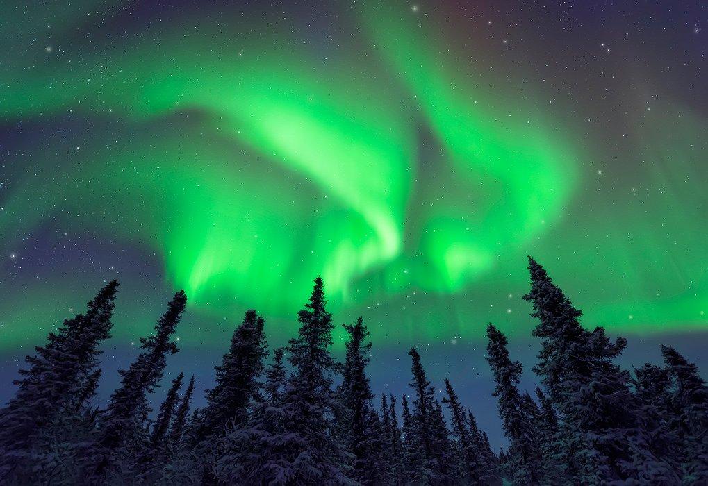 """겨울은 오로라 구경의 최적기. 알래스카 #Alaska 페어뱅크스에 3일을 머문다면, 오로라를 볼 확률이 무려 80%! l Flickr Credit: Paul Weeks """"Conjuring the Aurora"""" https://t.co/7awuwiRGsi"""