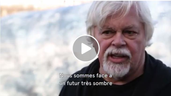RT @SeaShepherdPaul: We cannot live on a planet with a dead ocean. By @CaptPaulWatson #VIDEO: https://t.co/ntedHUnh1j @seashepherd https://…