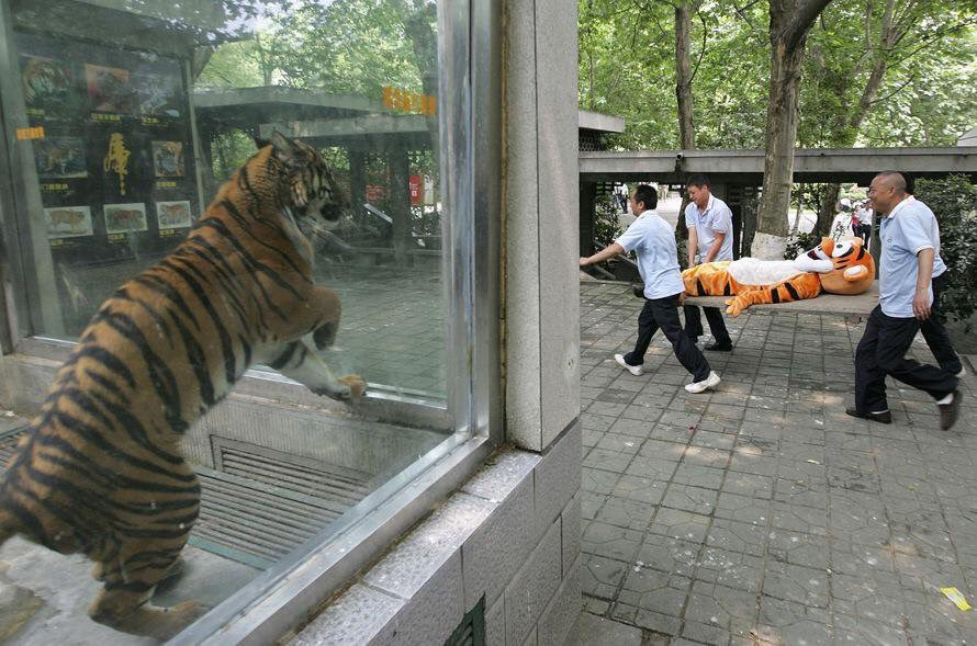 One of my favorite China photos of 2015. Still can't explain it. https://t.co/j2dNO1nYNX