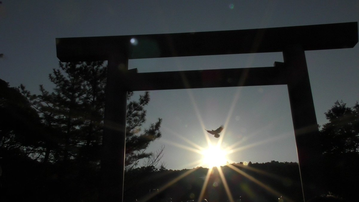 2016年1月1日の元旦、伊勢神宮の大鳥居から初日の出を狙った光の中に、偶然に鳥が飛んできて絶妙な場所で羽を広げてくれた、奇跡的な1枚。コレが撮れただけで、徹夜して行った価値があった…。 https://t.co/eaPKUa0ycd