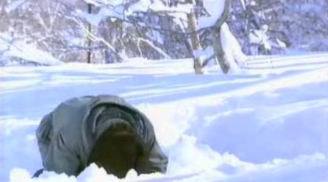 おら静岡で雪が積もったらウゾダドンドコドーン!やるんだ… https://t.co/hZcoMUMpQJ