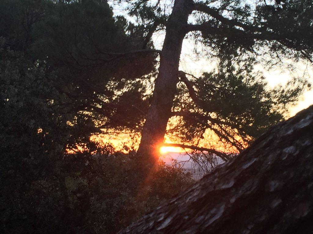 Merci Soleil pour cette nouvelle journée ! #Luberon https://t.co/Amzote7udu