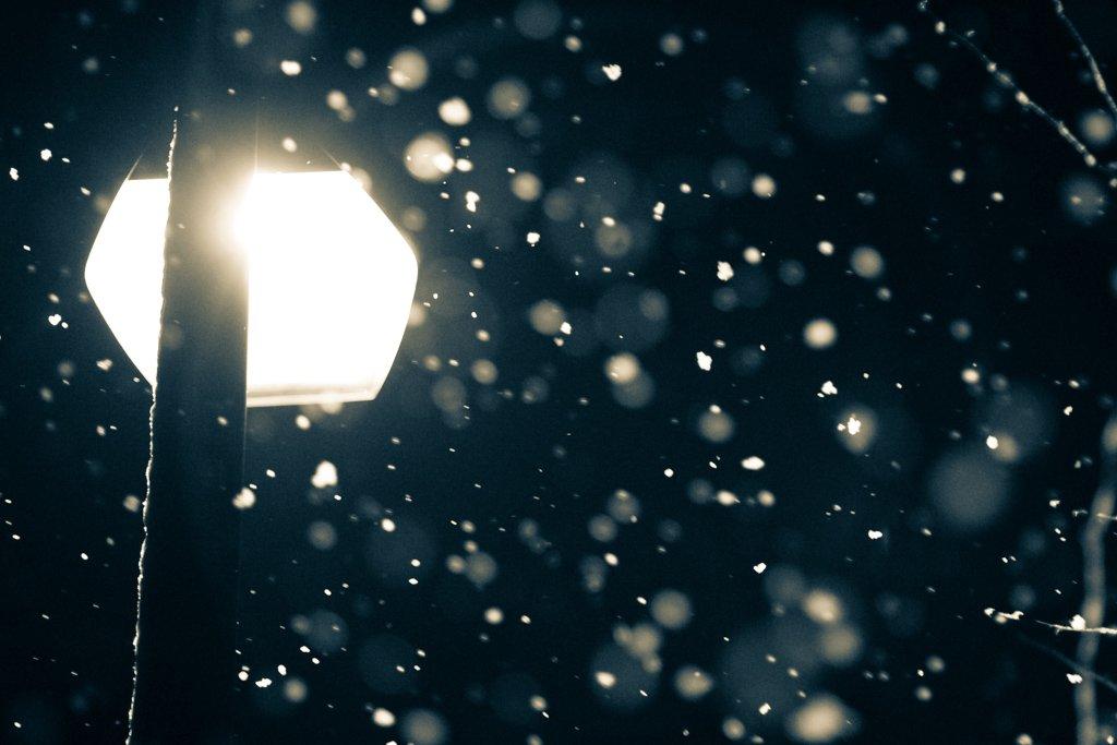窓の外を見て初めて雪に気付きました https://t.co/D8MtNwWrwW
